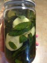 Rum Cucumber and Mint infusion